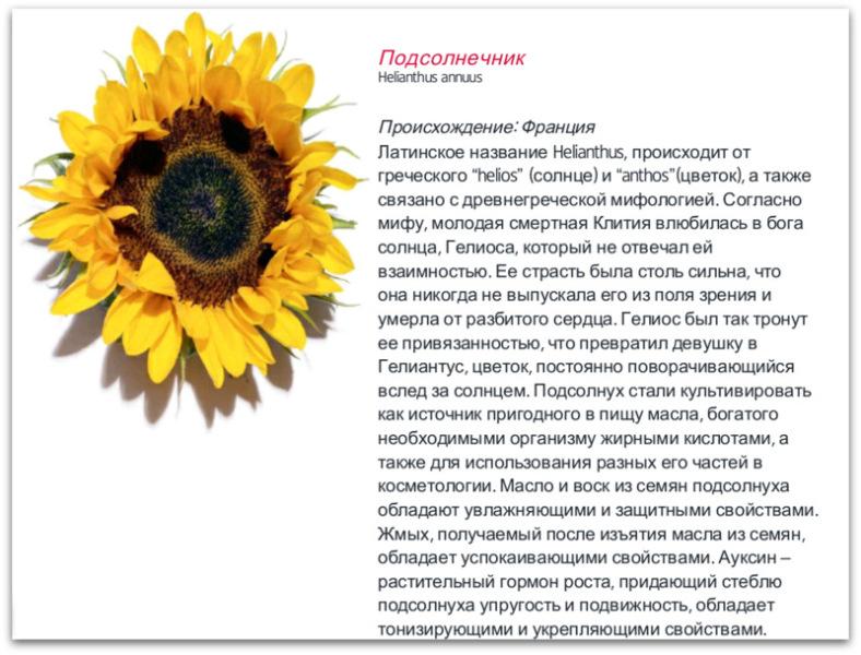 1-Screenshot_2014-09-20-20-53-59