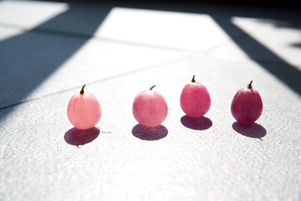 3542-Vinosource-Pink_grape